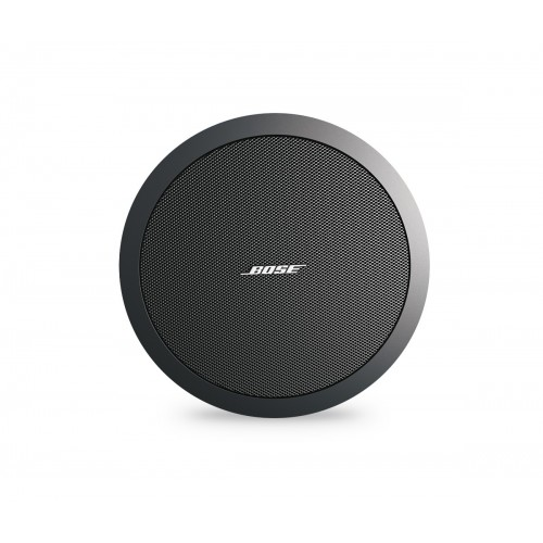 Bose Free Space DS100F speaker